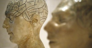 brain.d794027edca3553044e680af91629e59